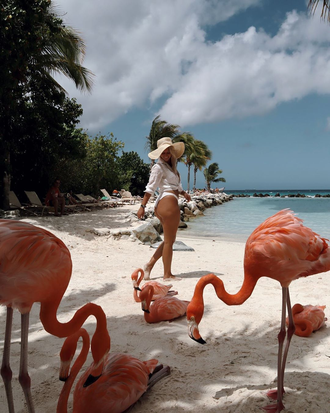 Honeymoon Ditemani Flamingo Pantai di Aruba Resort 11