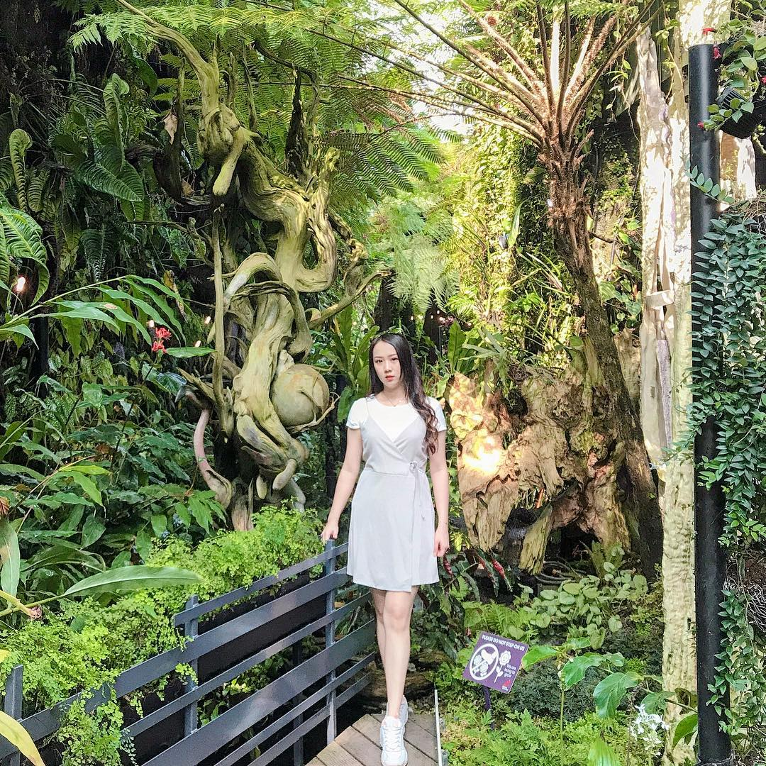 Inspirasi Wisata Traveling Singapore Garden by the Bay Cloud Forest 1