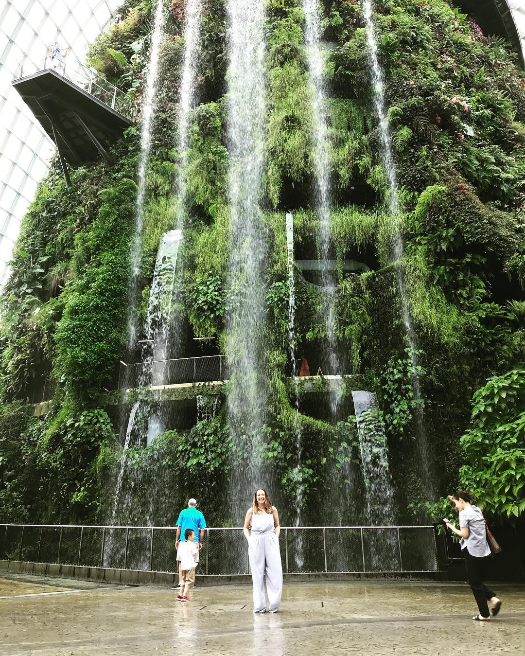 Inspirasi Wisata Traveling Singapore Garden by the Bay Cloud Forest 2